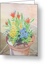 Spring Flowers In Pot Greeting Card