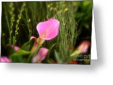 Spring Flowers No.11 Greeting Card