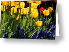 Spring Flowers Square Greeting Card