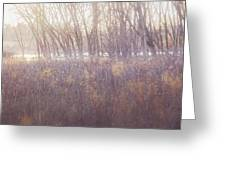 Spring Frost Greeting Card
