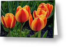 Spring Garden - Act One 2 Greeting Card