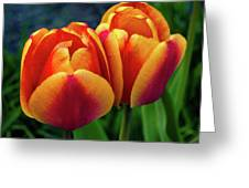 Spring Garden - Act One Greeting Card