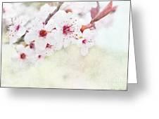 Spring Glory 1 Greeting Card