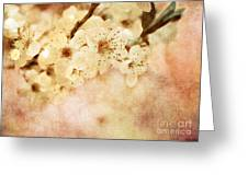 Spring Glory 2 Greeting Card