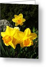 Spring Gold Greeting Card