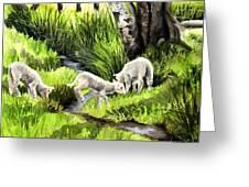 Spring Grasses Greeting Card