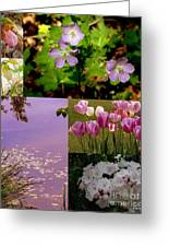Spring Has Sprung... Greeting Card