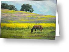 Spring Hill Grazing Greeting Card
