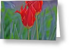 Spring Impression Greeting Card