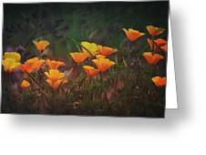 Spring In A Poppin' Greeting Card