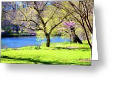 Spring In Bloom Greeting Card