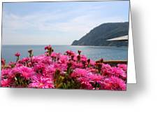 Spring In Cinque Terre Greeting Card