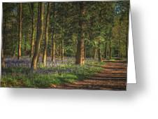 Spring In Haywood No 2 Greeting Card