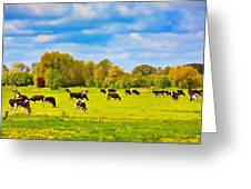 Spring In Holland-1 Greeting Card