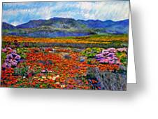 Spring In Namaqualand Greeting Card