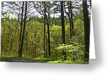 Spring In The Gorge Greeting Card