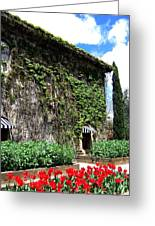 Spring In The Napa Valley Greeting Card