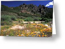 Spring In The Pinnacles Greeting Card by Kathy Yates