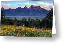 Spring In The Tetons Greeting Card
