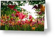Spring In Tivoli Greeting Card