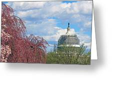 Spring In Washington And Dressed In Scaffolding Greeting Card