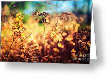 Spring Is A New Beginning Greeting Card