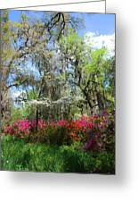 Spring Is All Over Greeting Card