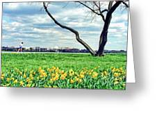 Spring Jog On The Potomac Greeting Card