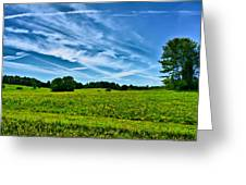 Spring Landscape In Nh Greeting Card