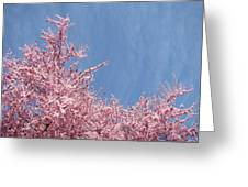 Spring Landscape Pink Trees Blossoms Blue Sky Baslee Troutman Greeting Card