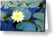 Spring Lily Greeting Card
