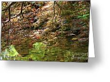 Spring Maple Leaves Over Japanese Garden Pond Greeting Card