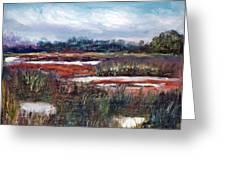 Spring Marsh Greeting Card