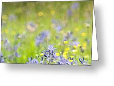 Spring Meadow 3 Greeting Card