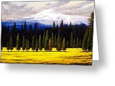 Spring Meadow Mount Brokeoff Greeting Card
