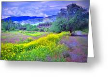 Spring Morning Along The Channel Parkway Greeting Card