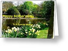 Spring Mother's Day Greeting Greeting Card
