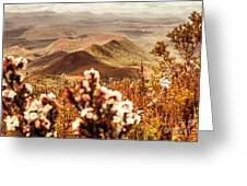 Spring Mountain Blossoms Greeting Card