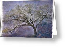 Spring Oak Greeting Card