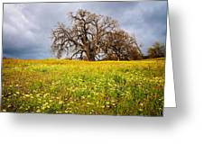 Spring Oak Tree And Wildflowers Greeting Card