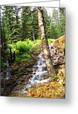 Spring Of Water Greeting Card