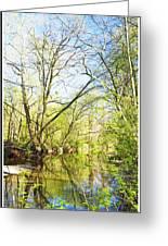 Spring On A Pennsylvania Stream, Fairmount Park, Philadelphia Greeting Card