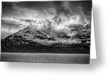 Spring On Glacier Bay Greeting Card