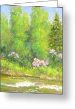 Spring On Gore Creek Greeting Card
