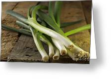 Spring Onions Greeting Card