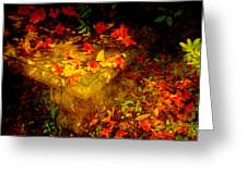 Spring Or Autumn Greeting Card