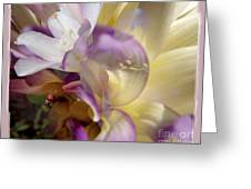 Spring Overture Greeting Card