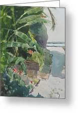 Spring Palms Greeting Card