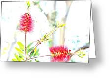 Spring Pastel Greeting Card