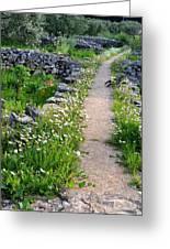 Spring Path/loving Greeting Card